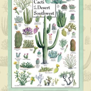 Poster Art - Cacti of the Desert Southwest 1000 piece Puzzle - Masterpieces