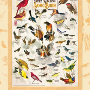 Poster Art - Audubon Song Birds 1000 piece Puzzle - Masterpieces