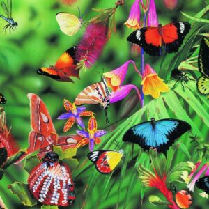 Garry Fleming - Butterflies & Beetles 1000 Piece Jigsaw Puzzle - Blue Opal