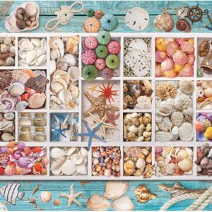 Seashell Collection 1000 Piece Jigsaw Puzzle - Eurographics