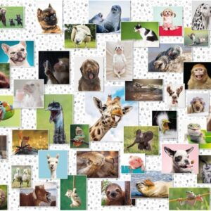 Funny Animals 1500 Piece Puzzle - Ravensburger