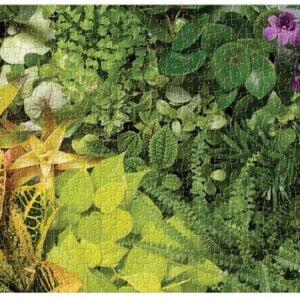 Panoramic Plant Life 1000 Piece Puzzle - Galison