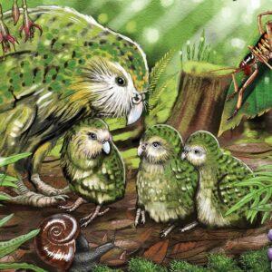 Treasures of Aotearoa - Kakapo Kaha 300 XL Piece Puzzle - Holdson