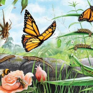 Treasures of Aotearoa - Bugs & Butterflies 300 XL Piece Puzzle - Holdson